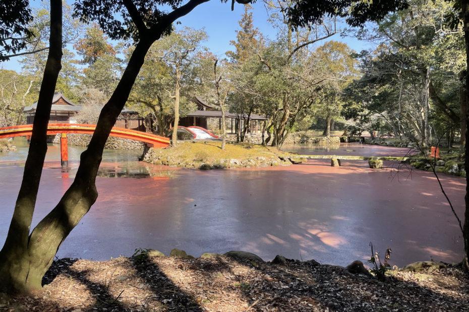赤く染まる宇佐神宮の池